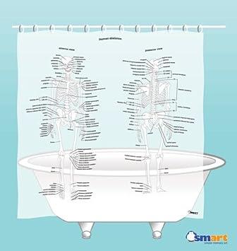 Human Skeleton Shower Curtain by SMART- EVA vinyl: Amazon.co.uk ...
