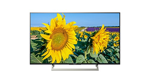 Sony KD-49XF8096 - Televisor 49' 4K HDR LED con Android TV (Motionflow XR 400 Hz, 4K X-Reality Pro, Pantalla TRILUMINOS, Wi-Fi), Negro