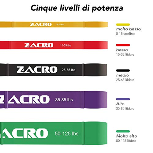 Zoom IMG-3 zacro elastiche resistenza band 5