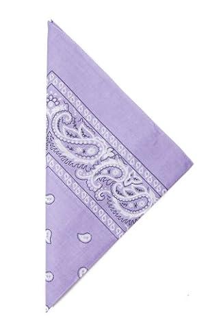 Paisley Bandana Handkerchief 22