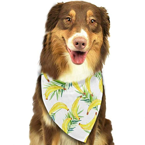 Hipiyoled Bananen und Blätter Muster stilvolle Haustier Hund Katze Bandana Halstuch Halstuch Schal (Blatt Mann Kostüm)