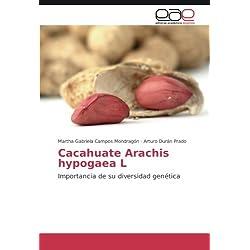 Cacahuate Arachis hypogaea L: Importancia de su diversidad genética