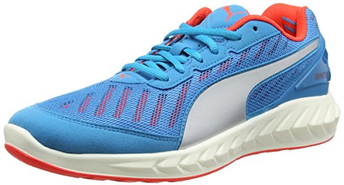 Puma Ignite Ultimate Scarpa Running Blu