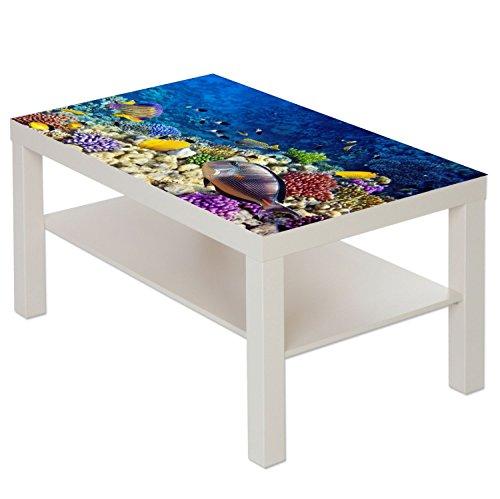 Table Basse Table avec Motif Animaux Poissons de récif corallien