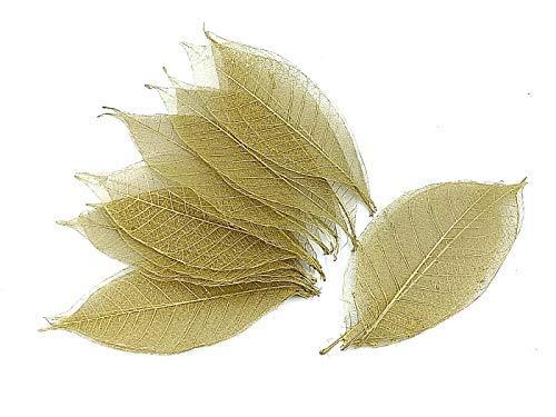Nava Chiang Gummi Baum Blätter-100Stück Skelett Blätter Dekorative DIY Craft, künstlichen Blättern Craft Karte Scrapbook DIY Handmade Dekoration/Verzierung Art gold