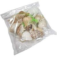 (MAR Conch TM) Mix Real Sea Shells Fish Aquarium   Natural Aquarium Fish Tank Decoration Seashells 500g Packet