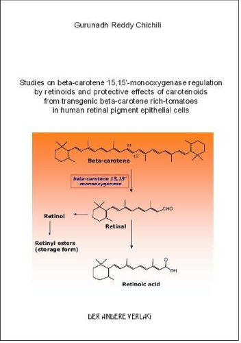 Studies on beta-carotene 15,15'-monooxygenase regulation by retinoids and protective effects of carotenoids from transgenic beta-carotene rich-tomatoes in human retinal pigment epithelial cells