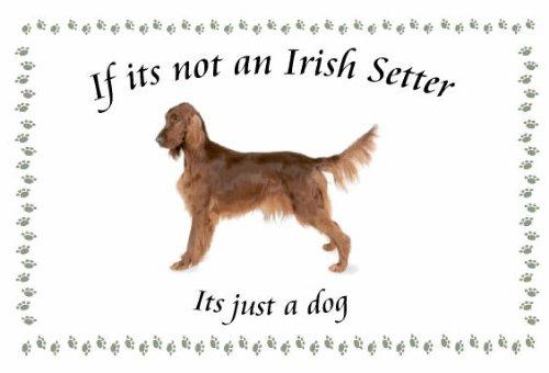 Irish Setter-Neuheit Hund Schlüsselanhänger-Wenn es nicht -