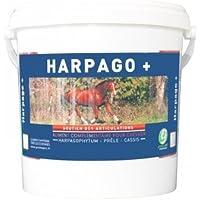 Greenpex - Harpago+ - 1,5 kg
