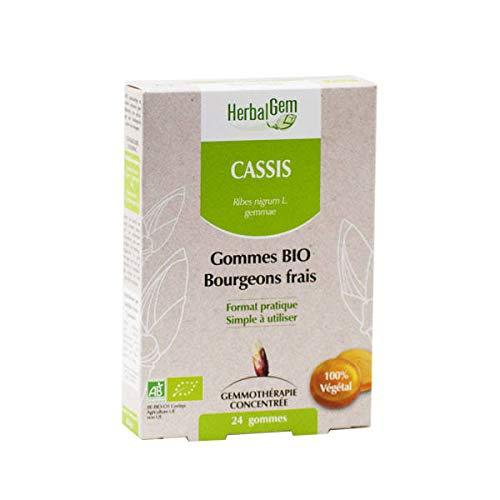 HerbalGem Gommes Bio Bourgeons Frais Cassis 24 Gommes