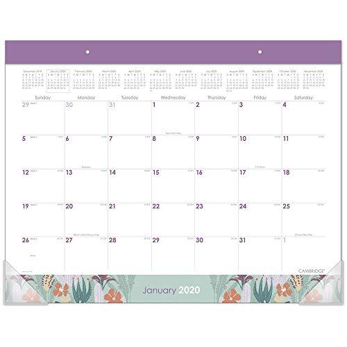 Cambridge 2020 Schreibtischkalender, 53,3 x 43,2 cm, Standard, Wild Cactus (D1256-704) - Wilden Salbei
