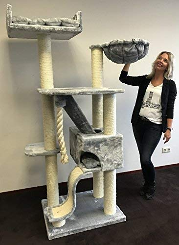 RHRQuality Kratzbaum große katze Kilimandjaro de Luxe l Hell Grau. Stabil 45KG!. Sisalstämme 12cmØ Katzenkratzbaum für große Katzen.