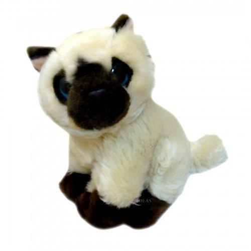Lamo Posh Paws et chat Brun Crème Soft Toys 7