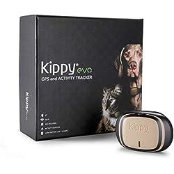 Kippy Evo, Le Nouveau GPS and activité pour Chiens et Chats, 38 GR, Waterproof, durée 10 Jours, Brown Wood