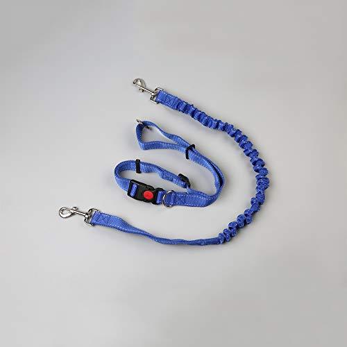 4' Waschen (4ft Starke Sport Hundeleine Atmungsaktiver Komfort, Trainingsleine für Geeignet für alle Hunde bis 30kg,Blue,1.2m)