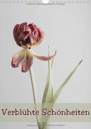 Verblühte Schönheiten (Wandkalender 2015 DIN A4 hoch): Blumen die verblüht sind (Monatskalender, 14 Seiten)