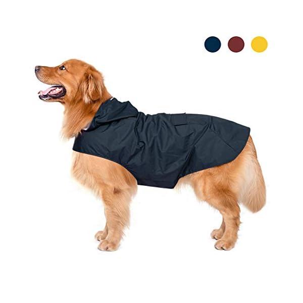 Zellar Dog Raincoat 1