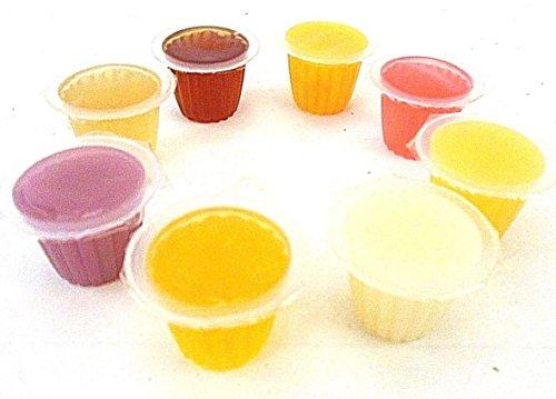 Fruit Jelly - Macetas para reptiles y lagartos (geckos, loros de pájaros y galletas)