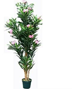 Proteam ho1921 arbre artificiel laurier rose 152 cm for Bureau en gros laurier