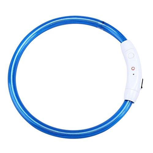 Tefamore wiederaufladbare USB wasserdicht LED blinkt Lichtband Sicherheit Haustier Hundehalsband (Blau)