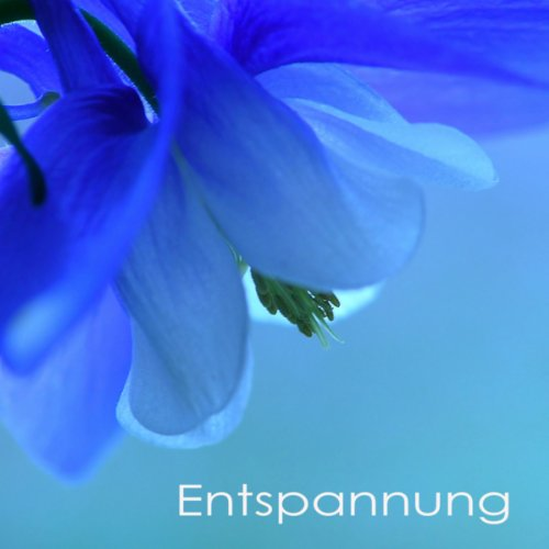 Entspannung - Entspannungsmusi...