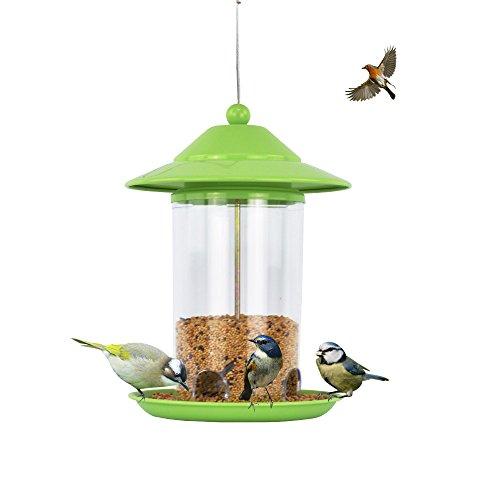 ZOE Bird Feeder Feeder Automatische Schneiden Papagei Taube Starling Thrush Outdoor Vogel Feeder Grün 17 * 23.5CM