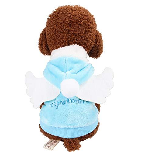 Hemotrade Hund Little Angel Wings Kleidung aus Reiner Baumwolle Hoodies for kleine Hunde Cat (Color : Blue, Size : XL) (Little Angel Kostüm)