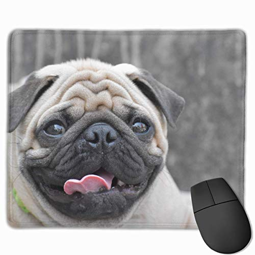 keiwiornb Pug Dog Personalized Design Mouse Pad Gaming Mouse Pad with Stitched Edges Mousepads, Non-Slip Rubber Base, 9.8x12 Inch/25 X 30cm, 3mm Thick - Best Gift Idea