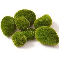 CamKpell Micro Paisaje Planta De Hadas Jardín Decoración En Miniatura Ornamento Artificial Piedra Musgo Falsa Simulación Piedra Musgo
