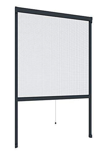 Windhager Insektenschutz Rollo Fenster Plus, Fliegengitter Alurahmen für Fenster, individuell kürzbar, anthrazit, 100 x 160 cm, 03877