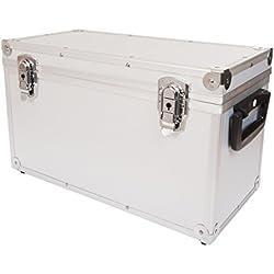 Pro Box 44943 45 - Caja para discos de vinilo, tamaño grande, color plata