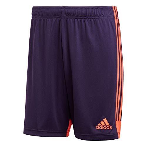 adidas TASTIGO19, Short Uomo, Legend Purple/True Orange, M