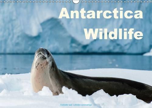 antarctica-wildlife-uk-version-wall-calendar-2017-din-a3-landscape-antarctica-wildlife-penguins-seal