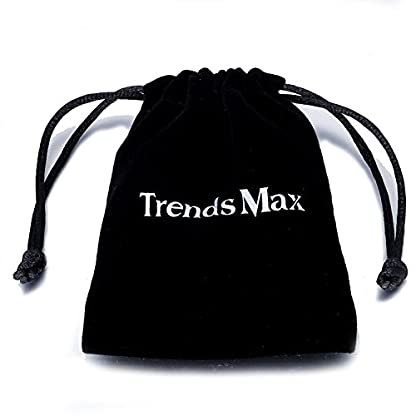 Trendsmax 13mm Silver Tone Curb Cuban Link 316L Stainless Steel Dog Choke Chain Collar 12-30inch 4