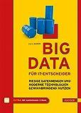 Big Data für IT-Entscheider: Riesige Datenmengen und moderne Technologien gewinnbringend nutzen (Print-on-Demand)
