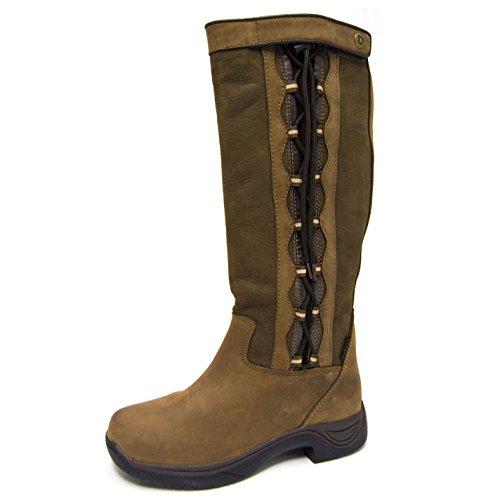 Reitstiefel Pinnacle Stiefel Schokolade Damen Boots Wasserdicht Hofstiefel Dublin wRABqII