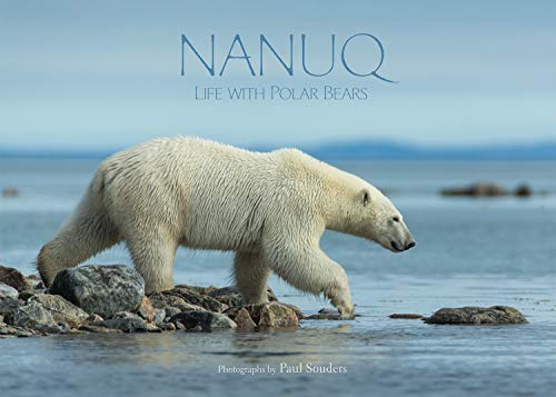 Nanuq: Life with Polar Bears