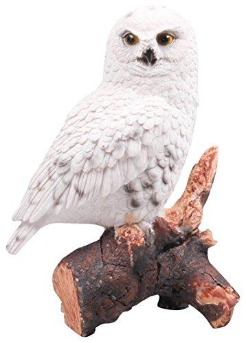 FARMWOOD 3089sw 12x 8x 18cm) Real Life–Figura decorativa de búho de nieve multicolor