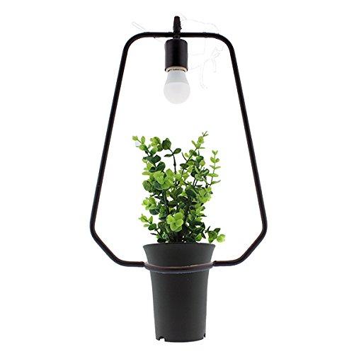 LEDUNI ® Lampara Colgante de Techo Iluminación Decorativa Natural Con Maceta Colocar Planta Casquillo E27 (Modelo 2)