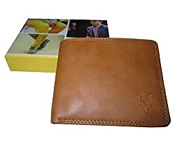 Allen Solly Men Wallet tan New