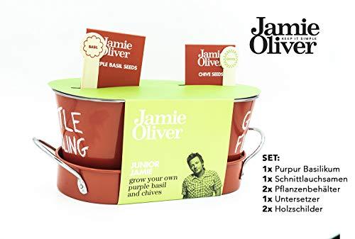 Jamie Oliver Kräuteranbauset für Kinder und auch Erwachsene Kinder