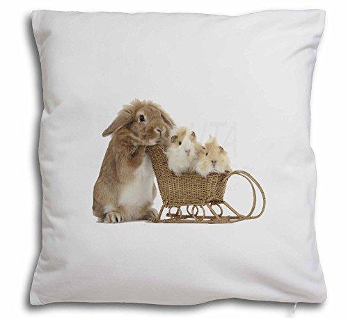 Kaninchen und Meerschweinchen Weiches Samt Gefühl Kissenhülle mit Kissen