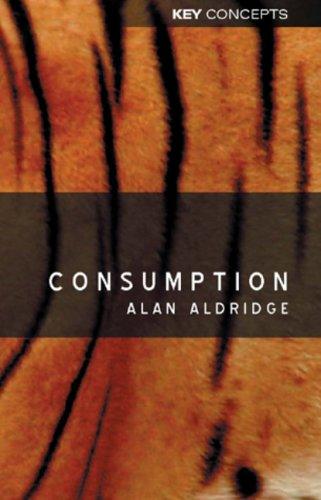 Consumption (Polity Key Concepts in the Social Sciences series)