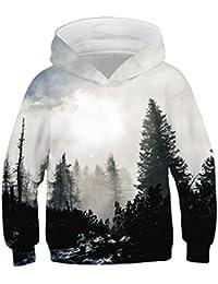 Suchergebnis auf Amazon.de für  coole pullover - Jungen  Bekleidung 6867d37b1d