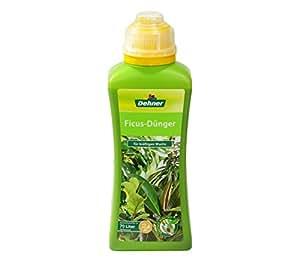 Dehner - Fertilizzanti ficus (500 ml a 70 L)