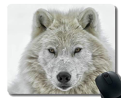 Gaming Mouse Pad Benutzerdefinierte, weiße Wolf Raubtier Winter Tier Wolf weiß Home Office Computer Zubehör Mousepads