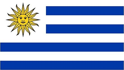 Uruguay Flag 5Ft X3Ft