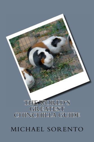 The World's Greatest Chinchilla Guide PDF Books