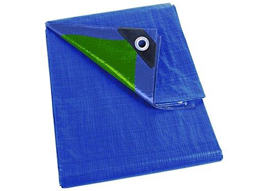 Perel Abdeckplane Basic, 500 x 800 x 0,3 cm, blau / grün, 254-58