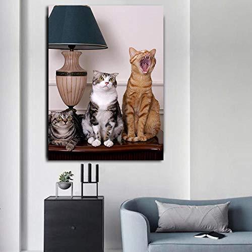 Leinwanddruck Leinwand Tier Wandkunst Drei Kleine Lustige Schottische Poster Und Drucke Bild An Der Wand 50Cmx70Cm -
